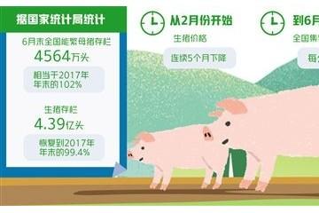 节本增效应对猪价起落